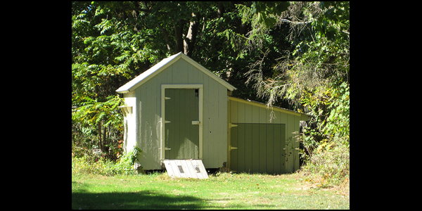 Reasons To Buy A Wooden Shed