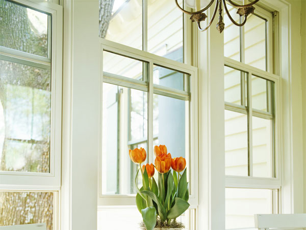 How to Choose the Right Window Frames