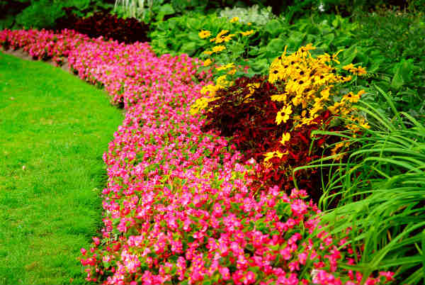 10 Ways To Make Landscaping Your Yard Easier