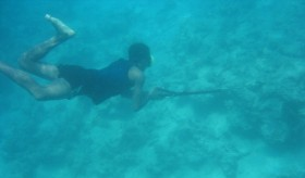 Spearfishing: A Popular Recreational Activity